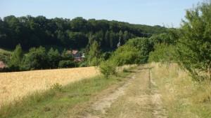 weg-feld-dorf-DSC03869